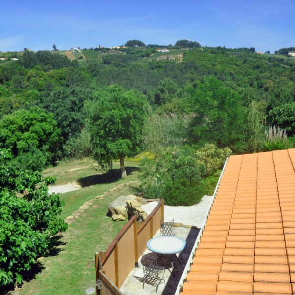 A view over a tiled roof to green fields and forests